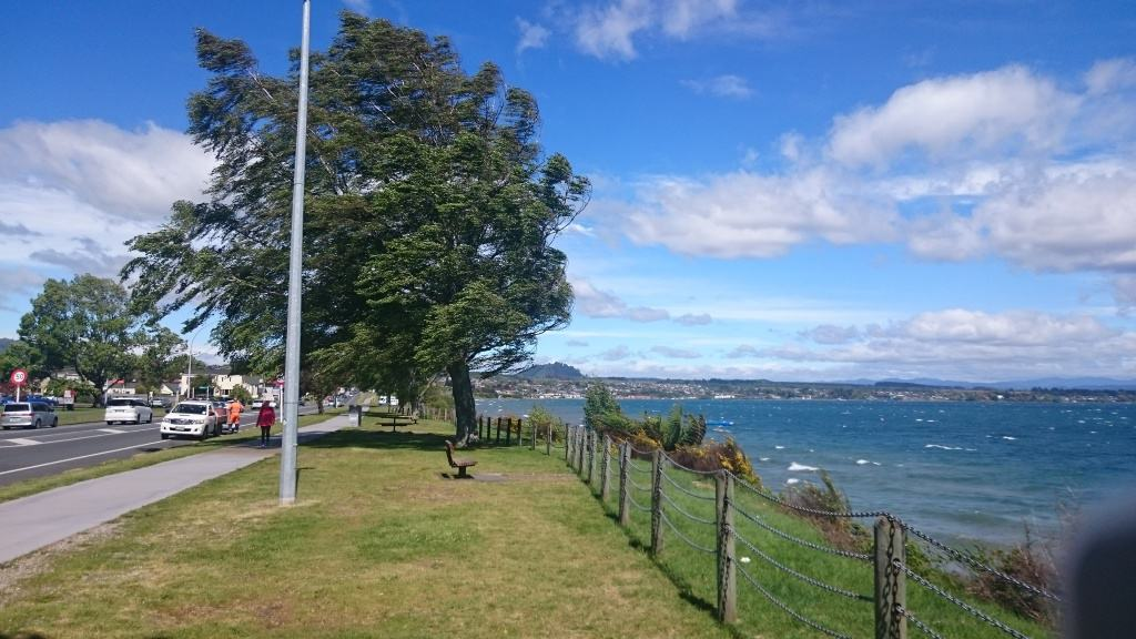 Blow me over Taupo, it's more like Wellington today!